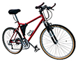 Bicycle (Adult)